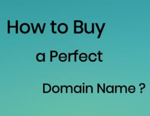 Buy a Perfect Domain