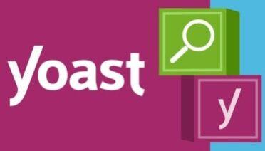 WordPress Yoast SEO Information and Customization