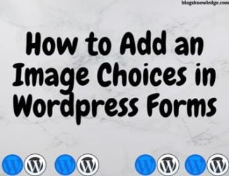 add image in wordpress forms